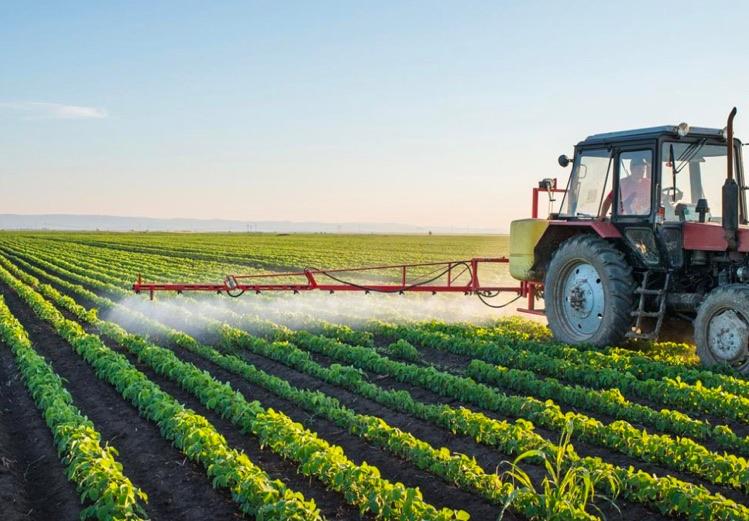 agricoltura-salento-consorzio-oggi